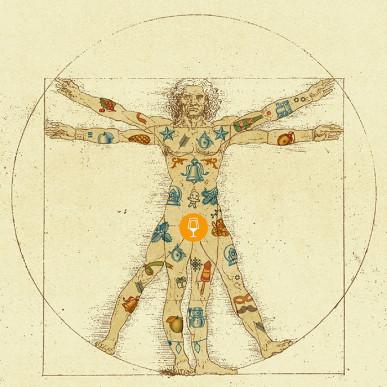 nowa-anatomia_33